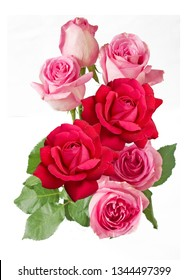 pink and red roses bunch isolated on white background