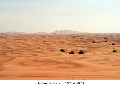 Pink Rock and Sharjah desert area, one of the most visited places for Off-roading by off roaders