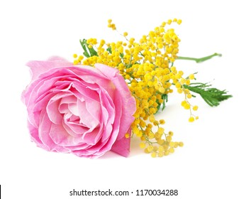 pink rose ans mimosa bunch isolated on white background