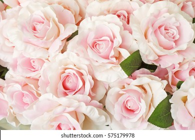 Vintage Rose Wallpaper Stock Photos Images Photography Shutterstock