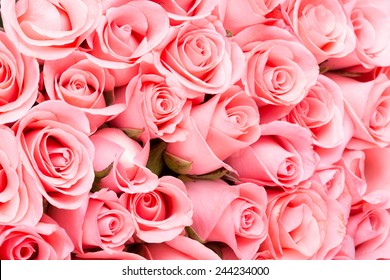 Pink roses background images stock photos vectors shutterstock pink rose flower bouquet background mightylinksfo