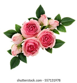 Pink rose flowers arrangement isolated on white