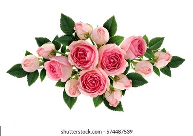Pink rose flowers and buds arrangement isolated on white. Flat lay, top view.