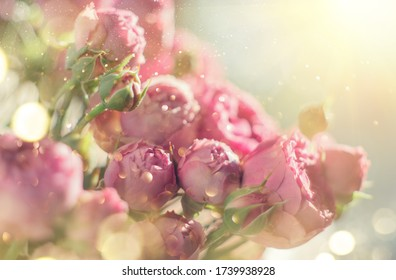 Pink Roses bouquet, blooming roses. Rose flowers bunch in sun light, nature. Holiday gift, Bunch of roses flower. Pastel colours. Holiday backdrop, birthday, wedding bouquet close-up.