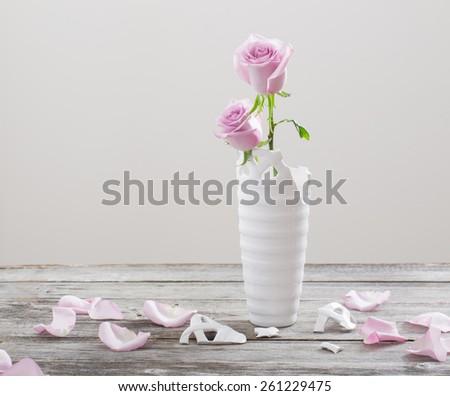 Pink Roses Broken Flower Vase On Stock Photo Edit Now 261229475