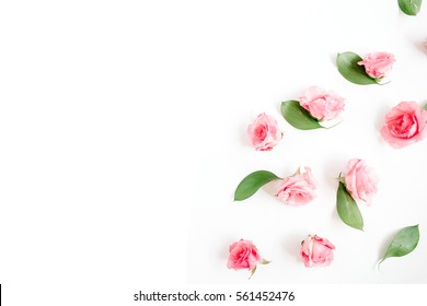 Pink roses buds on white background. Flat lay, top view. Valentine's background