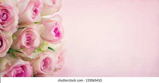 Pink roses on textured pastel background with copy space