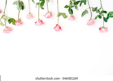 Pink roses on white background. Flat lay, top view. Valentine's background. Header
