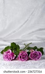 Pink roses on a white velvet fabric.