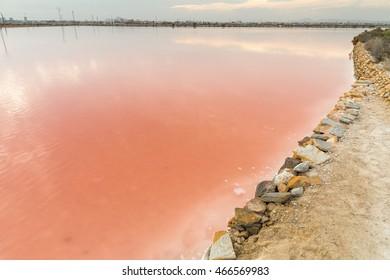 Pink Salt Lake - Salinas de San Pedro del Pinatar