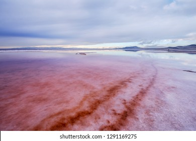 Pink salt water at Great Salt Lake,Utah