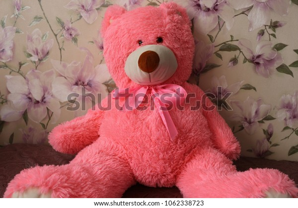 Pink soft bear is a favorite toy for girls.