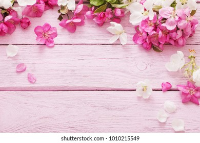 pink spring flowers on  wooden background