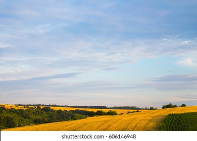Pink sunrise or sunset over colorful yellow harvested wheat or barley fields in an agricultural landscape of gently rolling hills