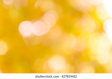 Pink and sweet bokeh out of focus background from nature forest