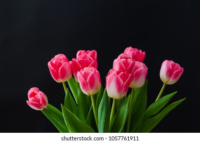 Pink tulip flowers boquet at black background