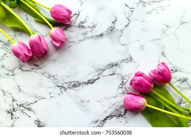 Pink tulips flatlay on the marble background
