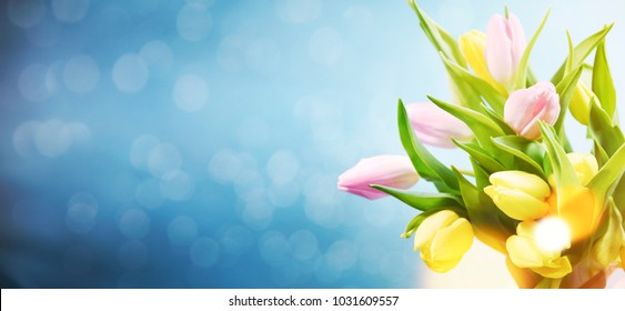 Pink Tulips Flowers  for March 8, International Womens Day, Birthday , Valentines Day or Mothers day