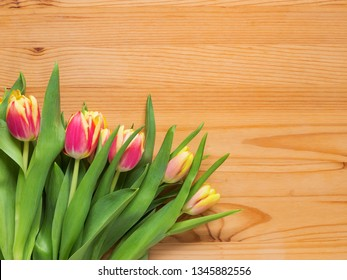 Pink tulips on a wooden background, blank