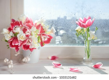 Pink tulips and white freesia flowers on the window board, sunshine after rain, spring background