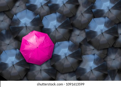 A pink umbrella stands out against a crowd of black ones. Female empowerment concept.