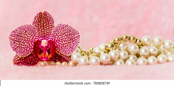 Pink Valentine's day gift banner and greeting card idea with orchid flower and pearls