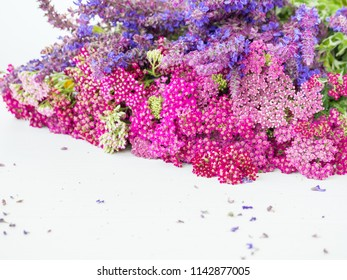 pink and violet flowers on white wooden background. wild flowers yarrow and sage. holiday birhday composition