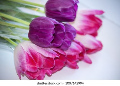Pink and violet tulips bouquet lying on the white table