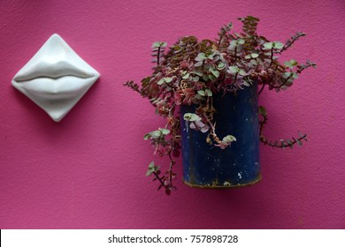 Hanging flowerpots images stock photos vectors shutterstock pink wall with colorful flower pots abstract lips hanging abstract background live plants mightylinksfo