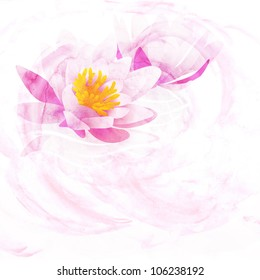 pink water lily watercolor illustration isolated on white