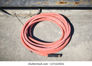 Pink watering hose coild isolated on sidewalk