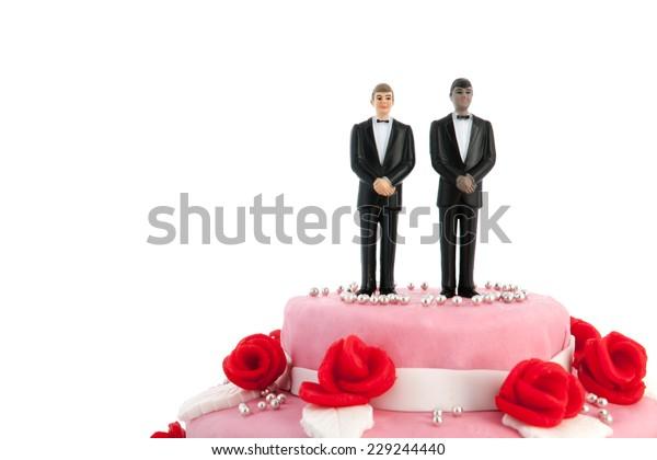 rosafarbener Hochzeitskuchen mit roten Rosen und Gay-Paar auf der Oberseite