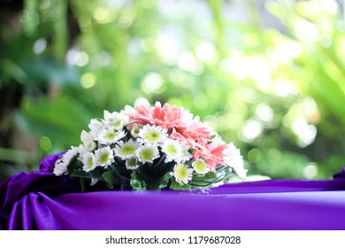 Pink and white chrysant flower on the dark purple table use for wedding decoration