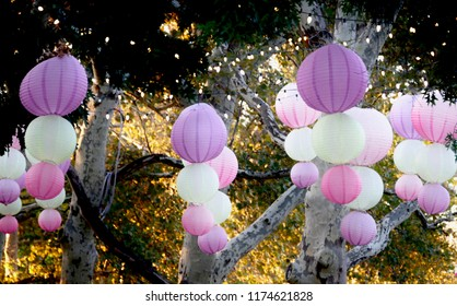Pink and White Lampions And Chains of Lights Hanging from Trees in Philadelphia, Pennsylvania, USA