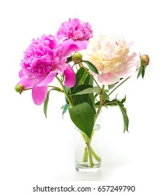 Pink and white peonies in a vase, on a white background.