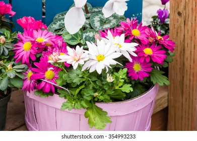 Pink wicker basket with spring flower assortment