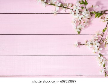 Pink wooden background with flowering cherry branches
