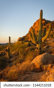 Pinnacle Peak in Scottsdale Arizona. A hiking park located in the hills of Arizona.
