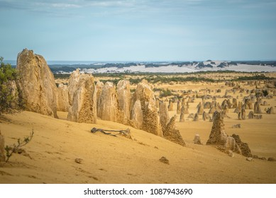 The Pinnacles Desert Australia with its amazing landscapes