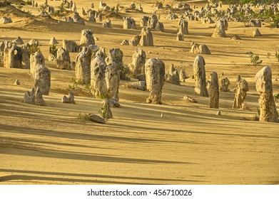 Pinnacles in the desert of Nambung National Park, Western Australia, Australia
