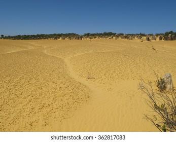 Pinnacles, Nambung National Park, Western Australia