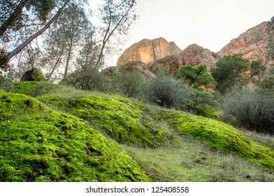 Pinnacles National Monument in California, USA.