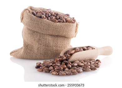 Pinto beans bag with wooden scoop on white background.