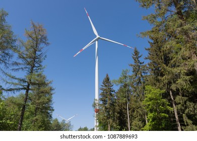 Pinwheel stands in the Black Forest between the trees