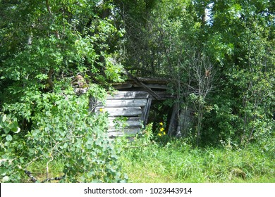 A Pioneer's Old Log Cabin