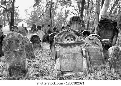 Piotrkow Trybunalski / Poland - 12.24.2018: Old jewish cemetery, matzevah, gravestones in winter. City of the first jewish ghetto established by Germans in the occupied Poland during world war II.