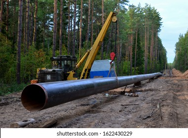 Pipelaying crane lowers a section of pipe into a trench. Construction of gas pipeline to new LNG plant. Crawler bulldozer with side boom operation install natural gas pipeline and oil pipes