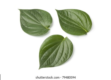 Piper betle leaves on white background