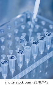 Pipette over test tubes in a science research lab