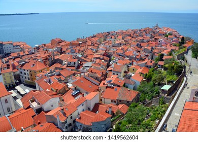 PIRAN SLOVENIA 05 17 2019: Bird eyes view of Piran on the Gulf of Piran on the Adriatic Sea from the Cathedral of St George's free-standing, 46.5m bell tower